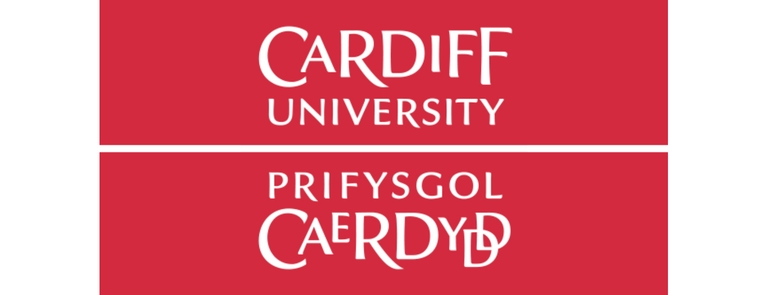 writing jobs cardiff Information for freelancers working at the bbc cymru wales drama studios at roath lock, cardiff search for placements based on location or job writer the.